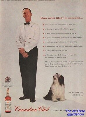 1963 Bearded Collie Dog Photo Canadian Club Whiskey CC Print Ad