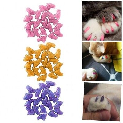 20Pcs Cat Soft Paws Caps Pet Kitten Nail Covers+ Adhesive Glue Claw Protection