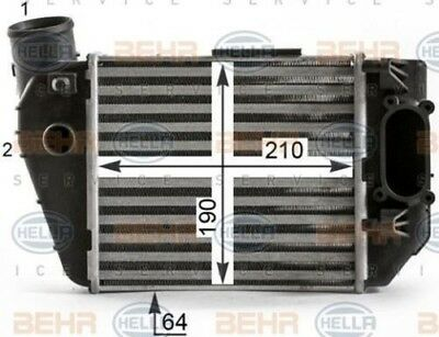 8ML 376 900-381 HELLA Intercooler charger Right