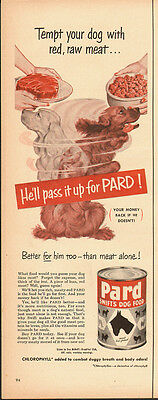 1940's Vintage ad for PARD~Swift's Dog Food/Golden Retrievers (101613)