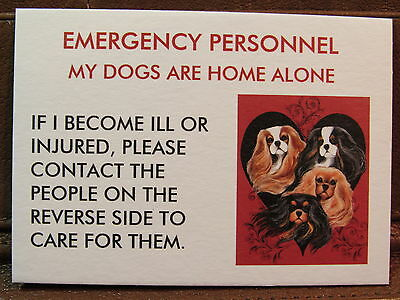 2 Dogs Home Alone EMERGENCY Contact Wallet Cards Cavalier King Charles Spaniel
