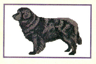 Newfoundland Dog Counted Cross Stitch Complete Kit