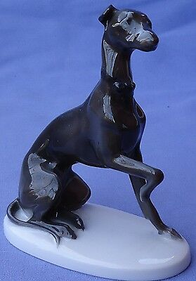 1930 Whippet Italian Greyhound Dog Rosenthal Germany