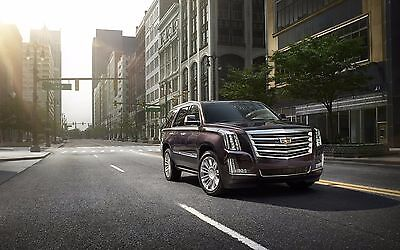 2015 Cadillac Escalade Platinum, 24X36 inch poster, luxury sedan