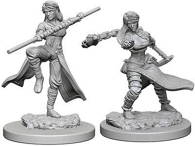 Human Monk - Dungeons & Dragons Pathfinder Primed Unpainted 25Mm Miniatures
