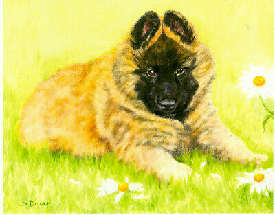 Belgian Shepherd Tervuren Limited Edition Puppy Print Where's Mum?