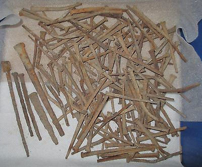 Lot 147 Old Rusty Nails Many Sizes & Shapes Crafts Home Decor FREE Ship