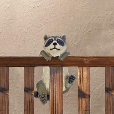 Curious Climbing Raccoon Buddy Hang on Fence, Nice Decor Item. FREE SHIPPING