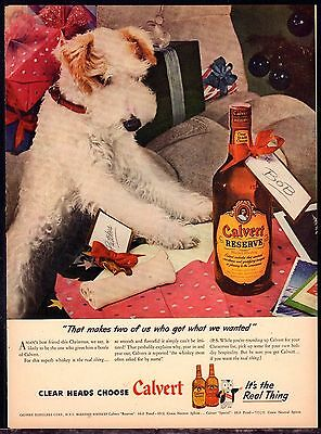 1945 WIRE FOX TERRIER Photo Vintage Print Calvert Whiskey Whisky AD