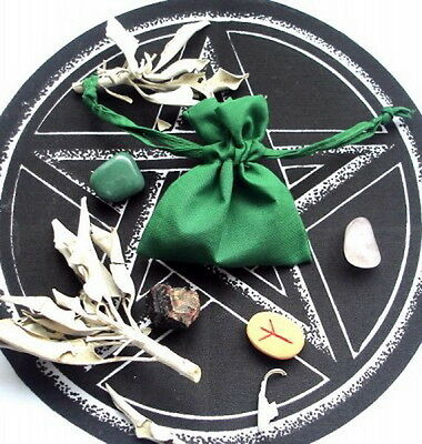 MONEY MOJO BAG WITH INSTRUCTIONS Wicca Pagan Witch Goth
