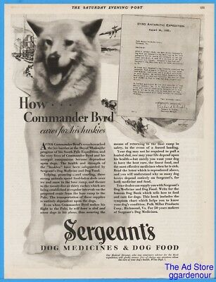 1929 Sergeants Dog Medicine Food Commander Byrd South Pole Huskies Care Ad