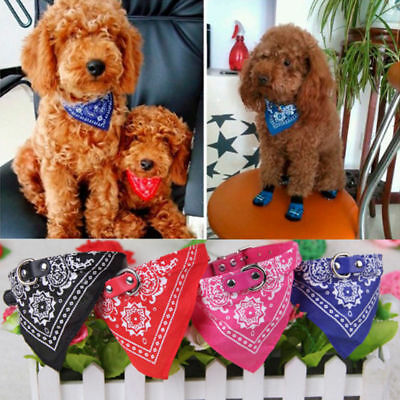Dog Puppy Cat Pet Neck Scarf Bandana with Leather Collar Neckerchief Adjustable