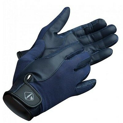 LEMIEUX PRO TOUCH PERFORMANCE RIDING GLOVES NAVY goat leather silicone grip