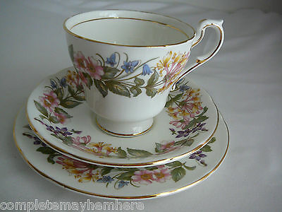Paragon Country Lane Trio Cup Saucer Plate England Flowers Collectable Pretty