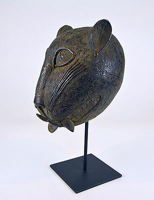 A Very fine Benin Bronze Leopard head, African Art