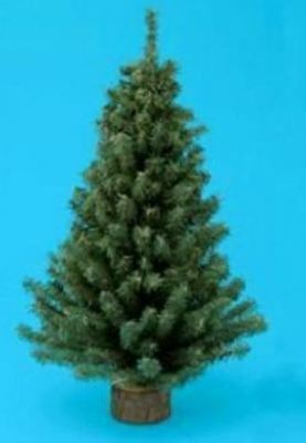 Miniature 12 Inch Artificial Pine Christmas Tree with 125 Tips and Base New Mini