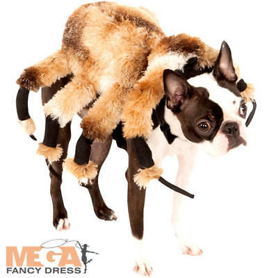 Giant Spider Dog Fancy Dress Arachnid Creepy Plush Deluxe Pet Halloween Costume