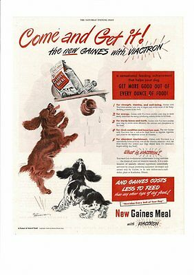Vintage 1948 Gaines Meal With Viactron Dog Food Cocker Spaniels Ad Print