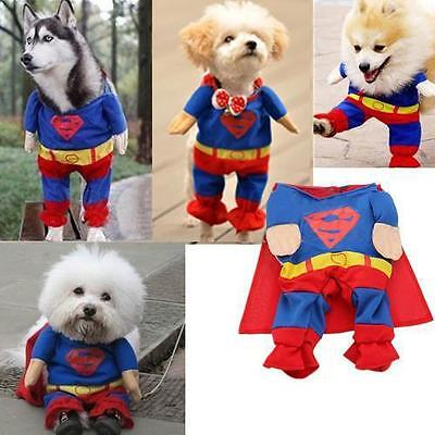 Superman M Adjustable Pet Dog Puppy Cat Neck Scarf S Puppy Clothes Costume Super