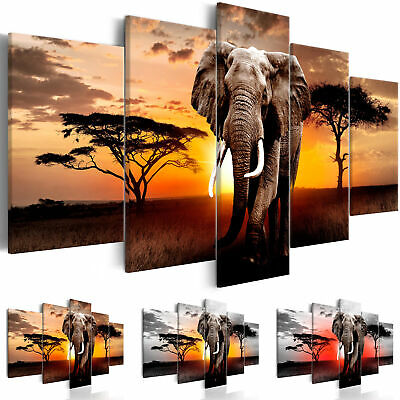 leinwand bilder xxl afrika savanne sonnenuntergang deko. Black Bedroom Furniture Sets. Home Design Ideas