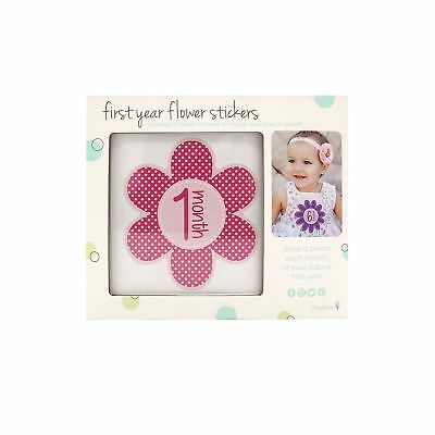 Tiny Ideas First Year Monthly Milestone Flowers Photo Sharing Baby Belly ...