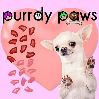 Soft Nail Caps For Dog Claws ( VALENTINES Combo )  Purrdy Paws * up to XXL