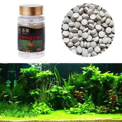 One Bottle 80g Nitrifying Bacteria For Fresh Water And Marine Water Fish Tank