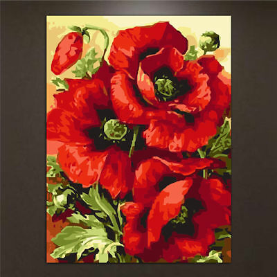 Poppy Flower Oil Painting DIY Paint By Numbers Acrylic Drawing On Canvas Decor