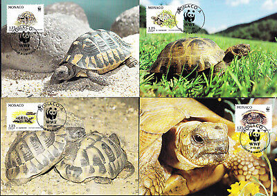 053190 WWF Schildkröten Turtles Monaco Maximum Card ´s