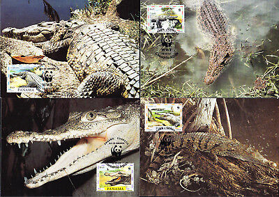 053311 WWF Reptilien Reptils Panama Maximum Card ´s