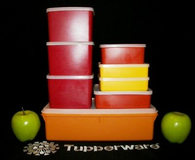 Tupperware AUTUMN 16 pc Picnic Lunch Keepers ~Kracker ~Square A Way ~Freeze It