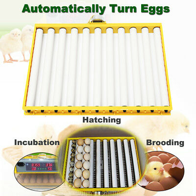 220V Chicken Duck Quail Dove Eggs 360°Turner Automatic Poultry Incubator Tray