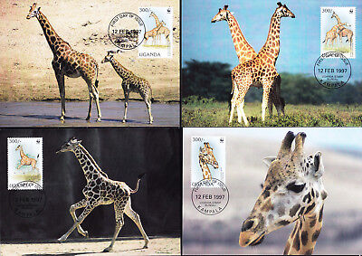 053505 WWF Giraffen Uganda Maximum Card ´s