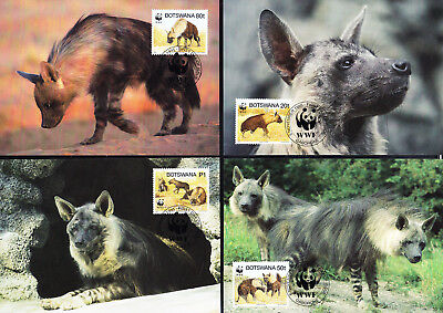 053541 WWF Hyäne Botswana Maximum Card ´s