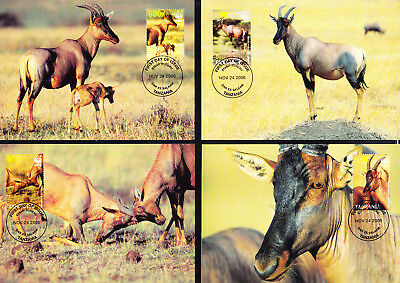 053600 WWF Rotwild Red Deer Tanzania Maximum Card ´s