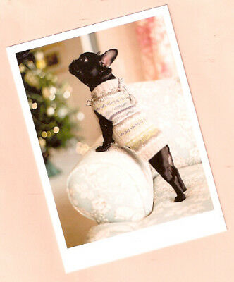 French Bulldog in Sweater Christmas Cards Box of 10