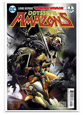 ODYSSEY OF THE AMAZONS #1 - Cover A - Ryan Benjamin Cover - DC Comics!