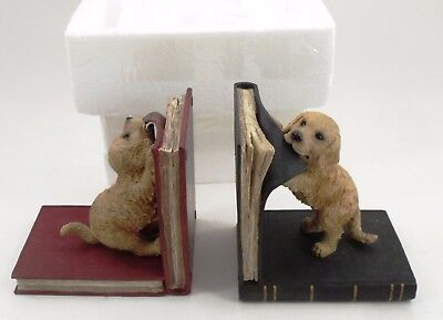 Heavy Cast Resin Playful Puppies Golden Retriever Pups Barnes & Noble Bookends