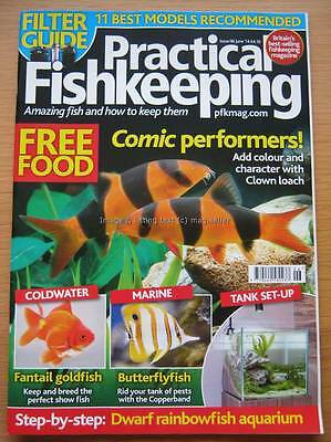 Practical Fishkeeping June 2014 Clown Loach Fantail Goldfish Butterflyfish