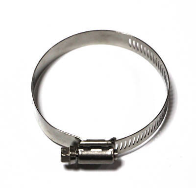 Taze High Torque Worm Drive Hose Clamp/ Worm Drive with Silver