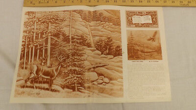 Vtg Craftaid Doodle Page Wildlife Whitetail DEER Scene Series12/2 by Al Stohlman