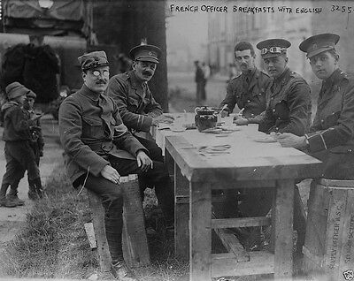 French and British Officers eating breakfast World War I WWI 8x10 Photo