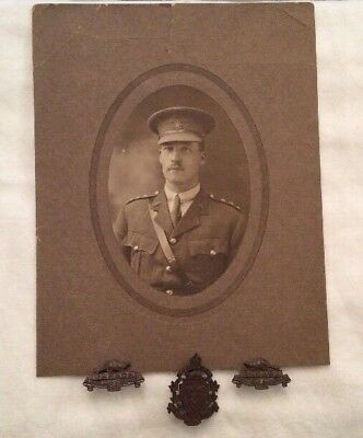 Officer Collars And Cap Badge 29th Battalion With Photo