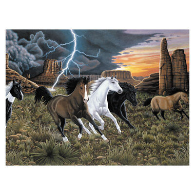 Thunder Run ( Horses ) PJL41 -Royal Langnickel Large Paint / Painting by Numbers