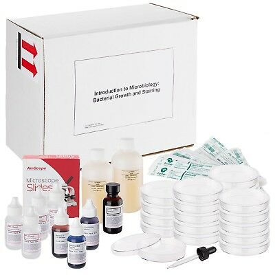 AmScope SK-104 Introduction to Microbiology Bacterial Growth and Staining Kit