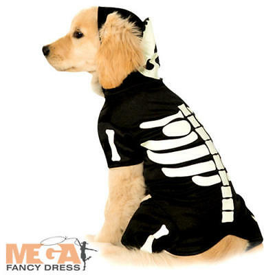 Pet Skeleton Hoodie Fancy Dress Halloween Skull & Bones Glow In the Dark Costume
