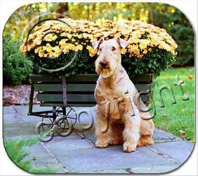 Airedale Terrier  Dog Computer MOUSE PAD Mousepad