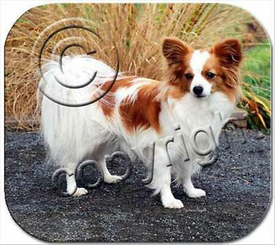 Papillon Brown White Dog Computer MOUSE PAD Mousepad