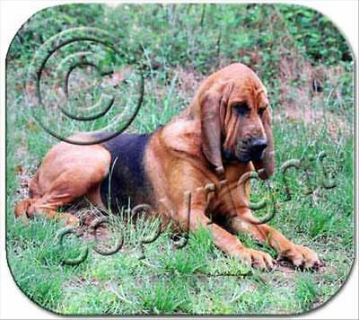 Bloodhound Dog Computer MOUSE PAD Mousepad