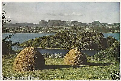 Lake Isle Innisfree Lough Gill Sligo  haystacks Old Unposted Postcard